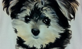 PET'S PORTRAITS (( THE BEST))