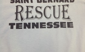 SAINT BERNARD RESCUE