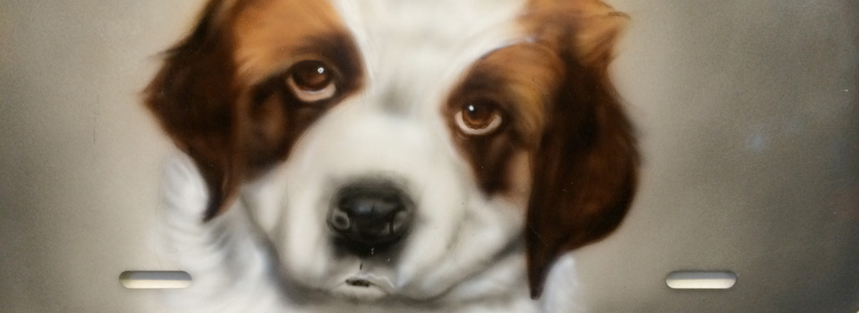 AIR BRUSH YOUR PET TODAY!!